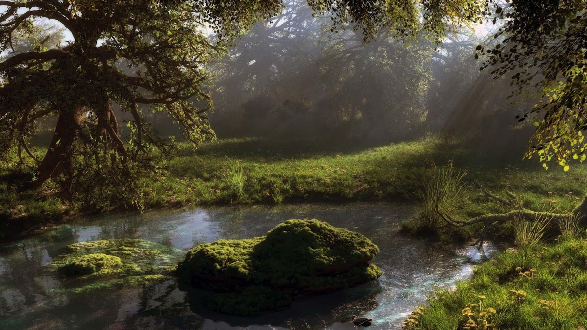 водоем в лесу фото
